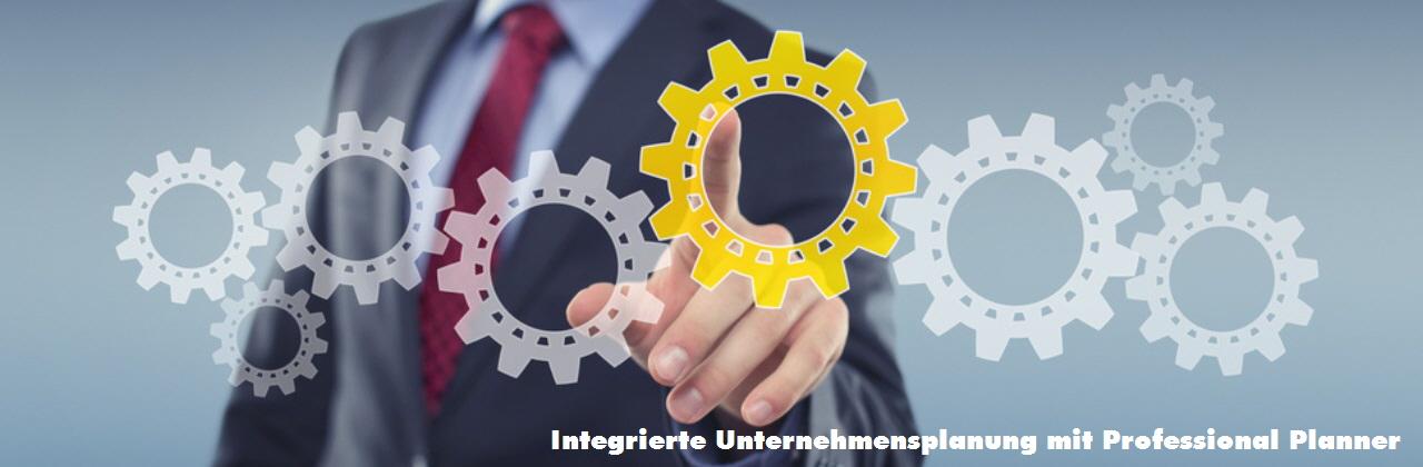 integrierte-unternehmensplanung-planner